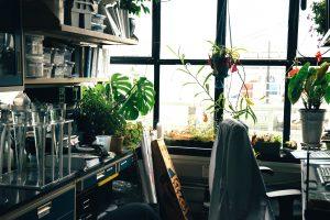 Clean Day Bureau